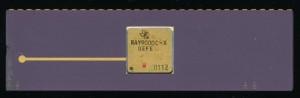 TI RAY9000C-X - SBR9000 Radiation Tolerant Processor