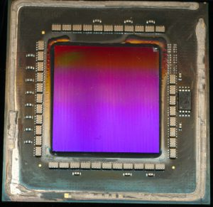 Vega 3 - 54-core die.  Truly massive die.  Software though allows workaround for many hardware defects.